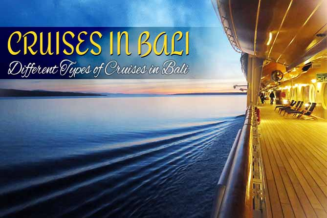 Different types of cruises in bali - Nitsa Holidays